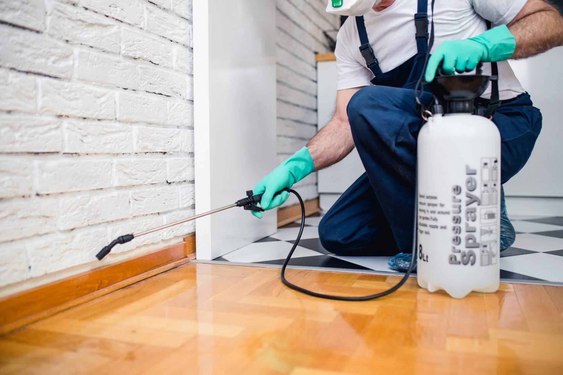Our general pest control services target all types of pests and critters.